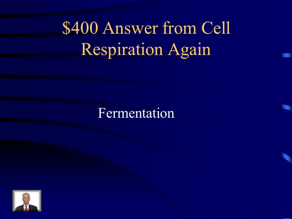 $400 Answer from Cell Respiration Again