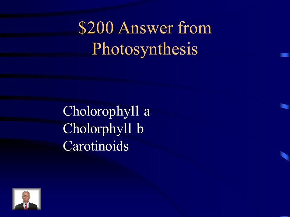 $200 Answer from Photosynthesis