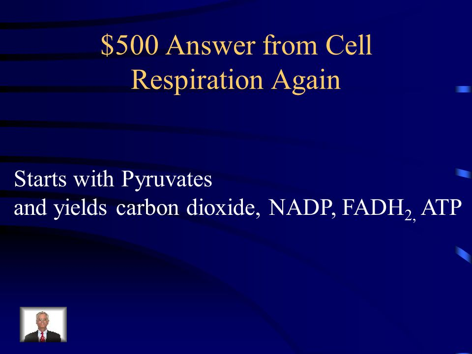 $500 Answer from Cell Respiration Again