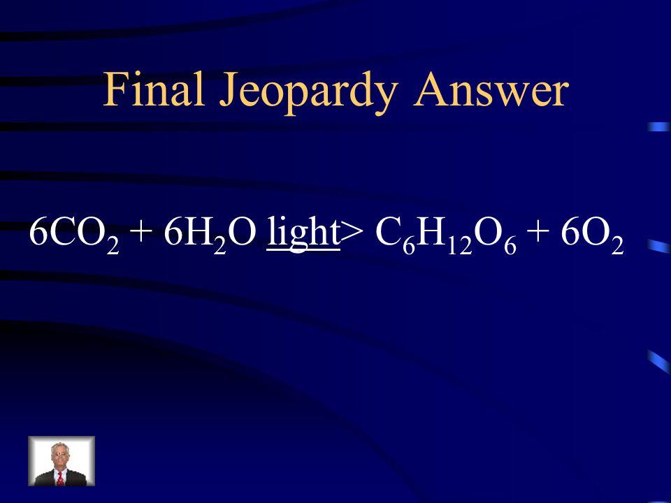 Final Jeopardy Answer 6CO2 + 6H2O light> C6H12O6 + 6O2