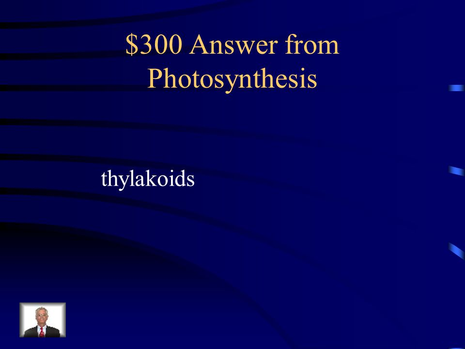 $300 Answer from Photosynthesis