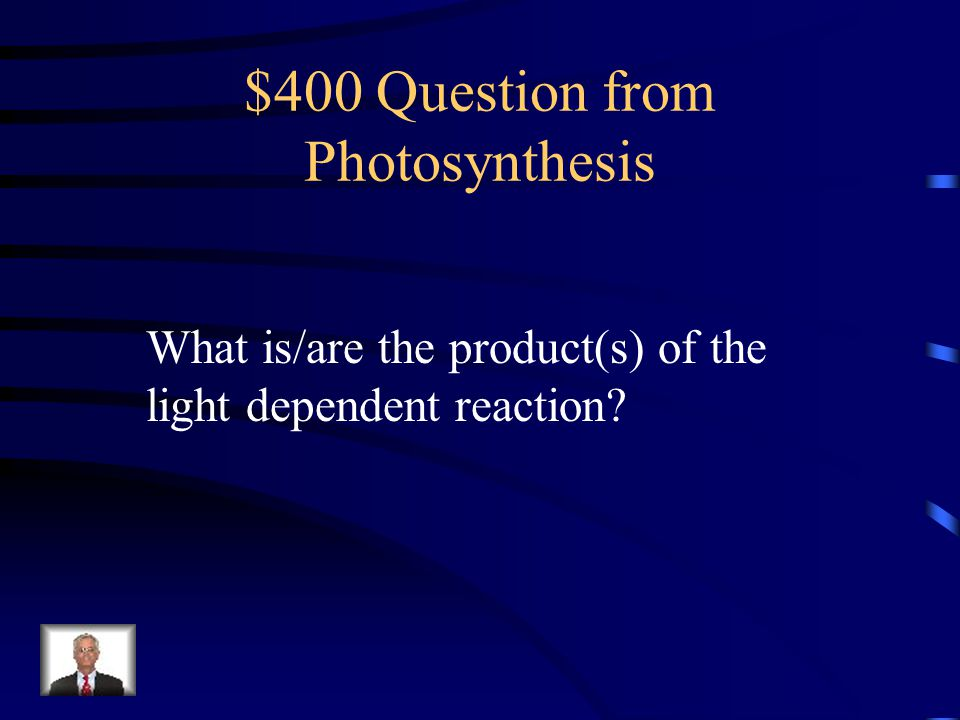 $400 Question from Photosynthesis