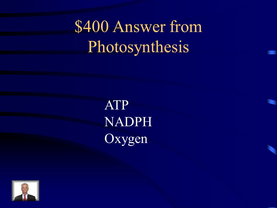 $400 Answer from Photosynthesis