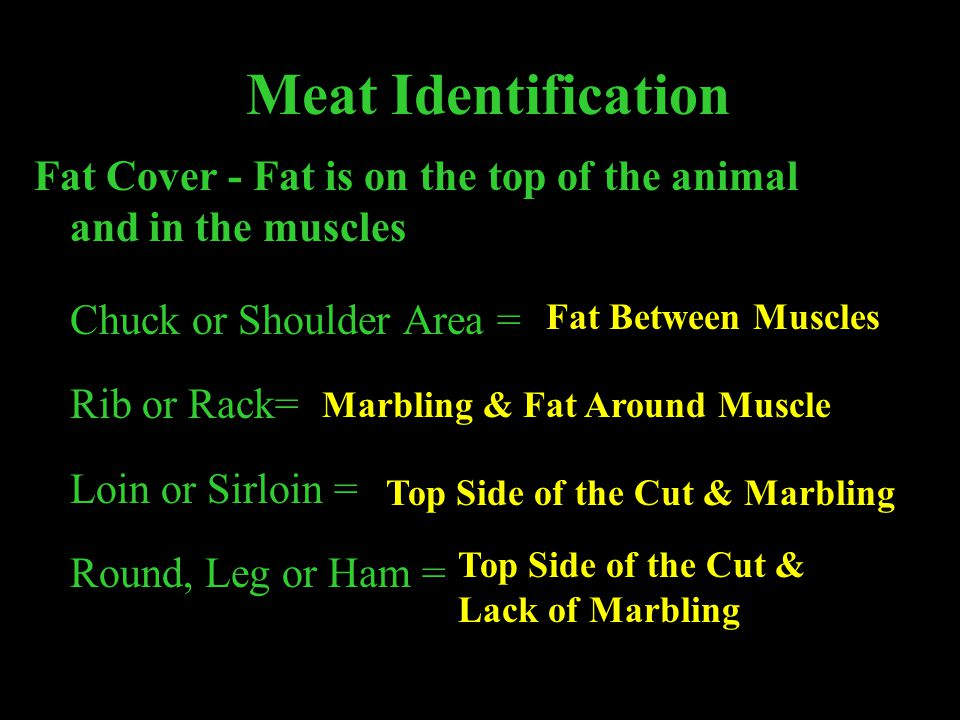Meat Identification Fat Cover - Fat is on the top of the animal and in the muscles. Chuck or Shoulder Area =