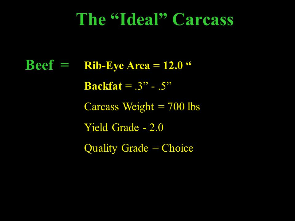 The Ideal Carcass Beef = Rib-Eye Area = 12.0 Backfat = .3 - .5