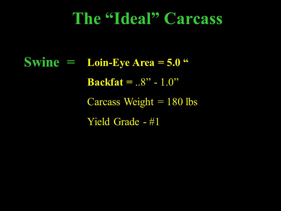 The Ideal Carcass Swine = Loin-Eye Area = 5.0