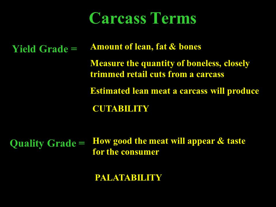 Carcass Terms Yield Grade = Quality Grade =
