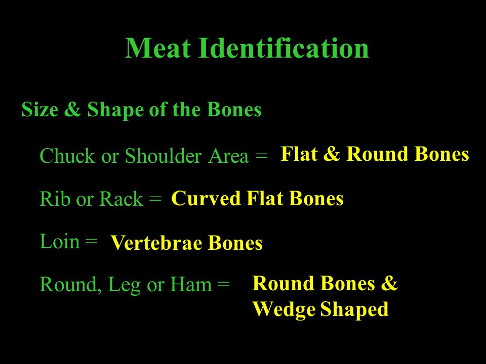 Meat Identification Size & Shape of the Bones Chuck or Shoulder Area =
