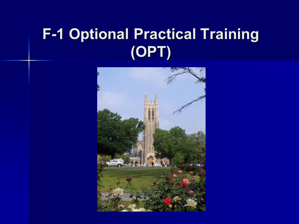 F-1 Optional Practical Training (OPT)