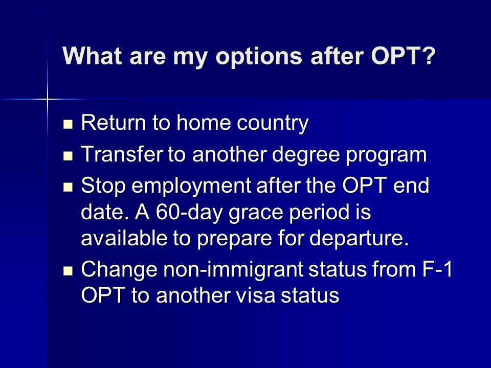 What are my options after OPT