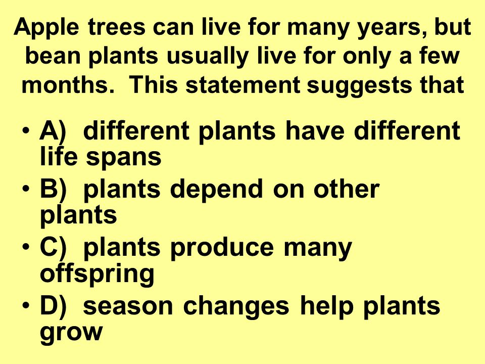 A) different plants have different life spans
