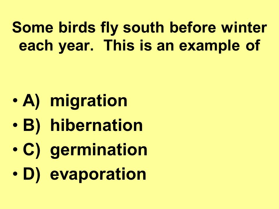Some birds fly south before winter each year. This is an example of