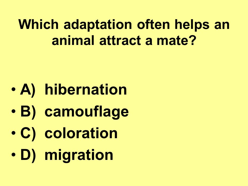 Which adaptation often helps an animal attract a mate