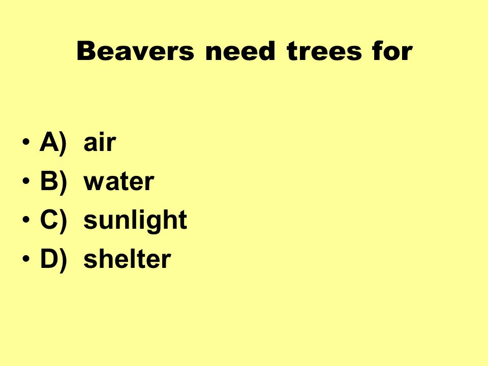 Beavers need trees for A) air B) water C) sunlight D) shelter