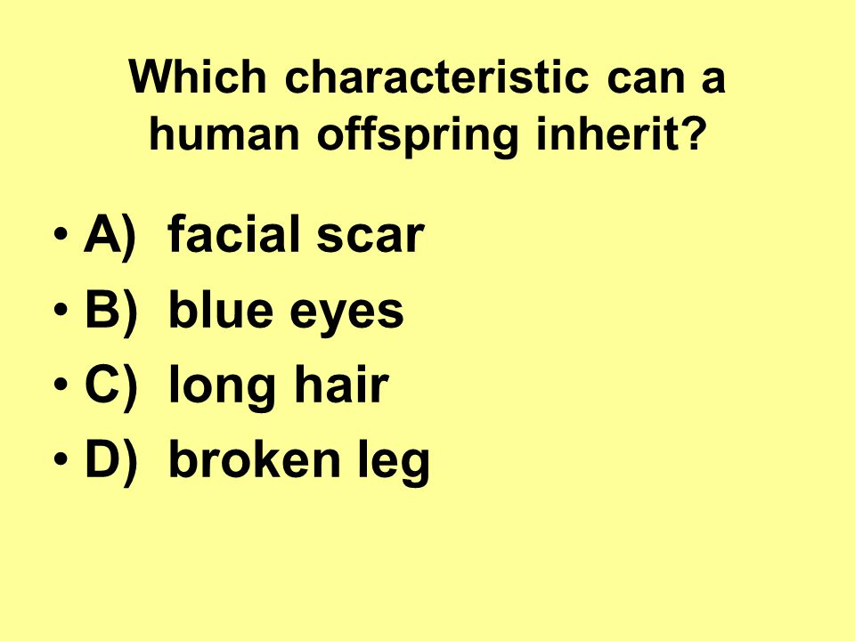Which characteristic can a human offspring inherit
