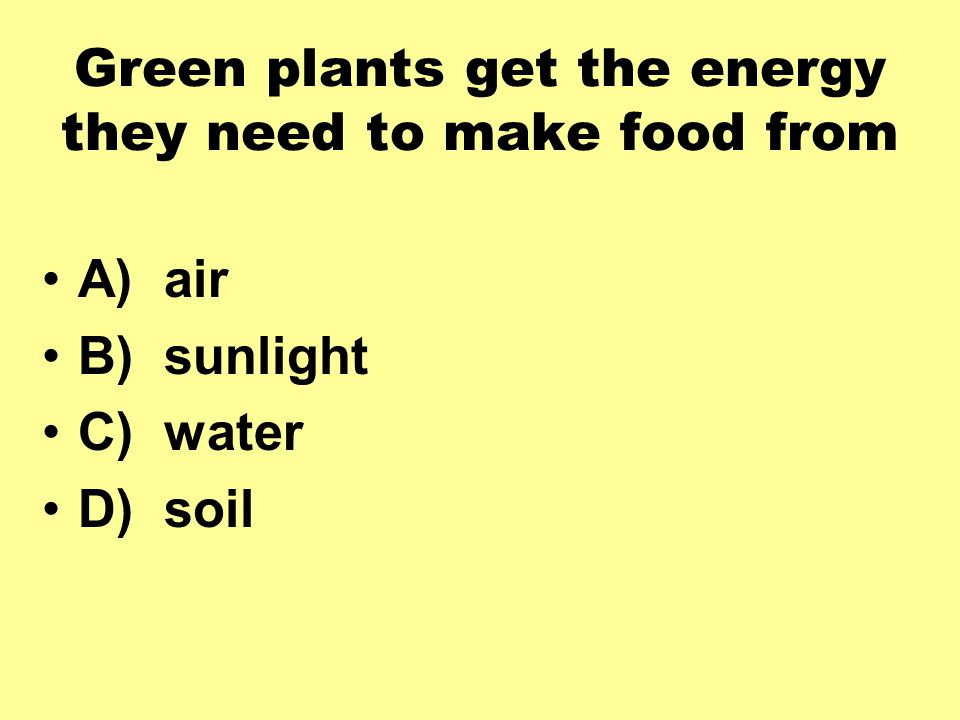 Green plants get the energy they need to make food from