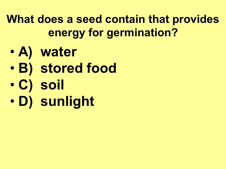What does a seed contain that provides energy for germination