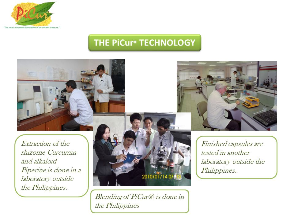 THE PiCur® TECHNOLOGY Extraction of the rhizome Curcumin and alkaloid Piperine is done in a laboratory outside the Philippines.
