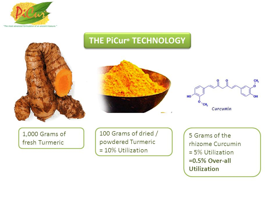 THE PiCur® TECHNOLOGY 1,000 Grams of fresh Turmeric