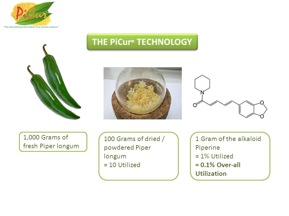 THE PiCur® TECHNOLOGY 1,000 Grams of fresh Piper longum