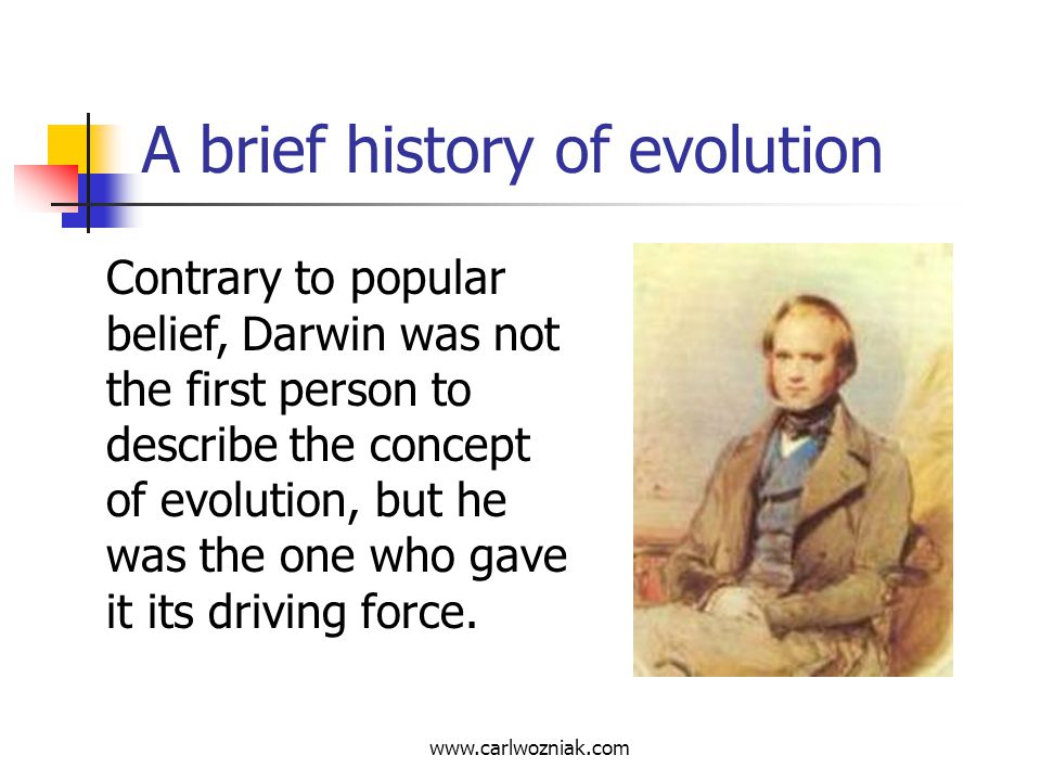 A brief history of evolution