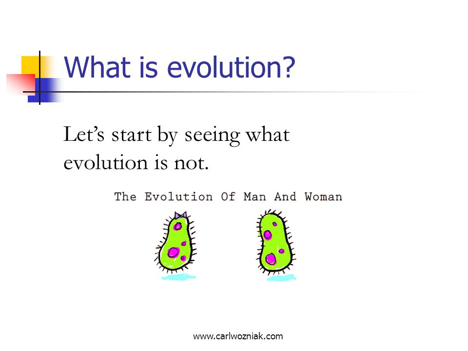 What is evolution Let's start by seeing what evolution is not.