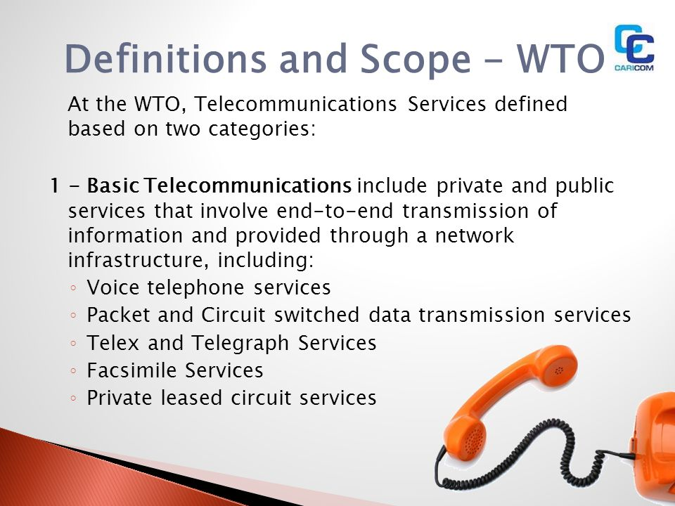 Definitions and Scope - WTO