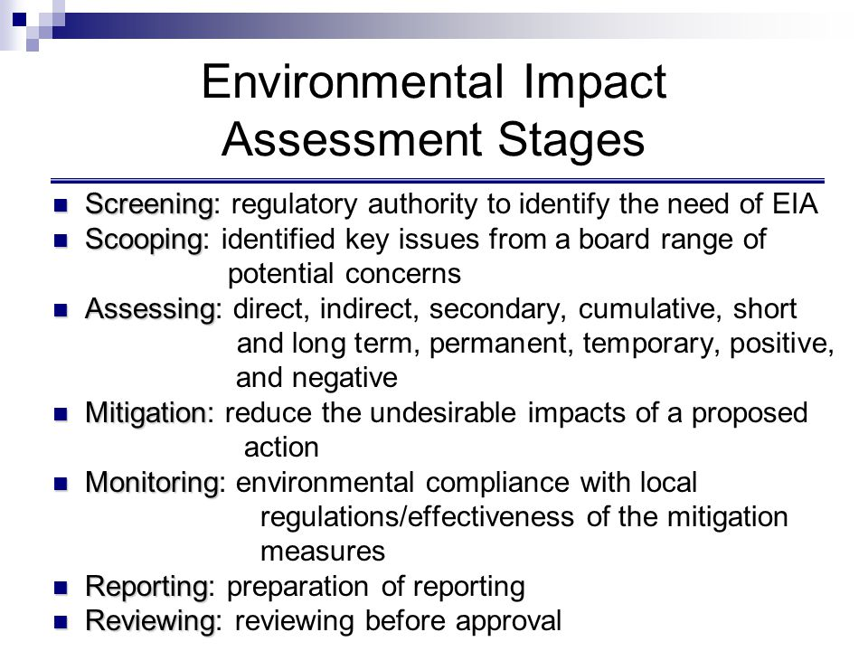 Environmental Impact Assessment Stages