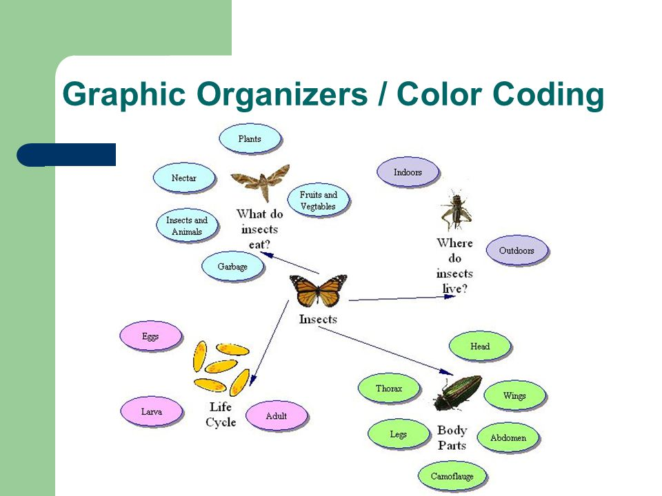 Graphic Organizers / Color Coding