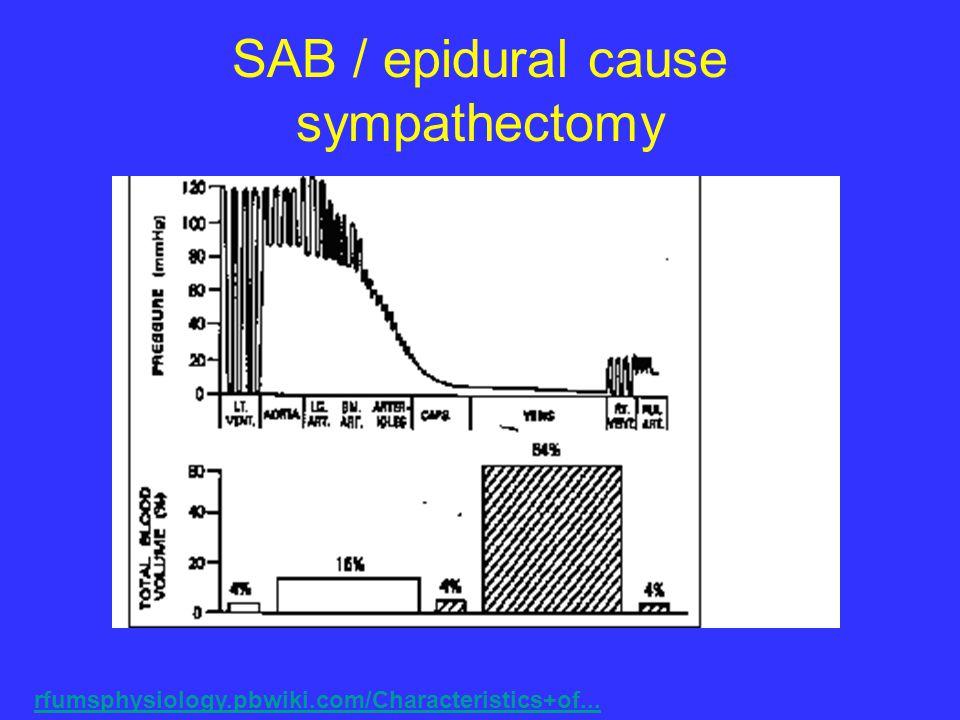 SAB / epidural cause sympathectomy