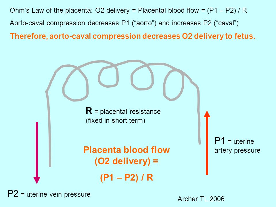 Placenta blood flow (O2 delivery) =