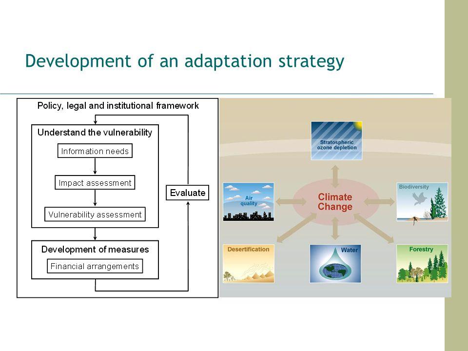 Development of an adaptation strategy