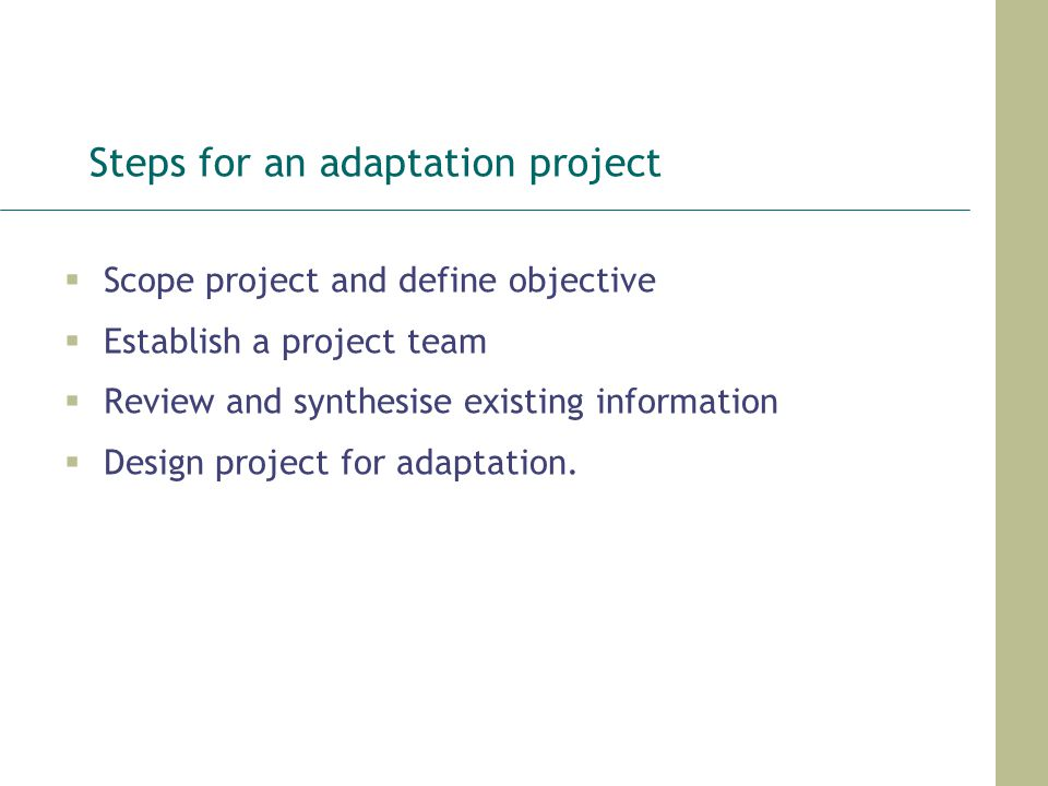 Steps for an adaptation project