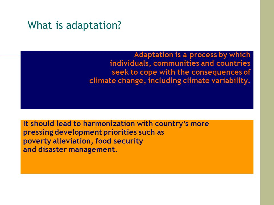 What is adaptation Adaptation is a process by which