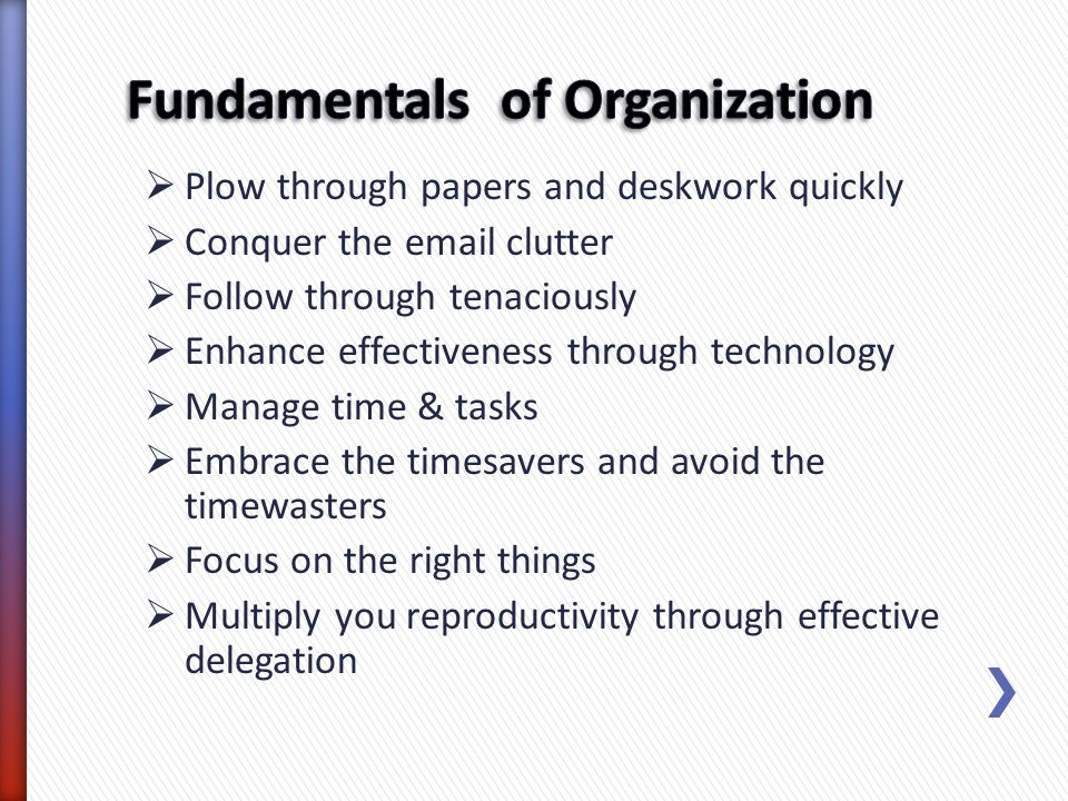 Fundamentals of Organization