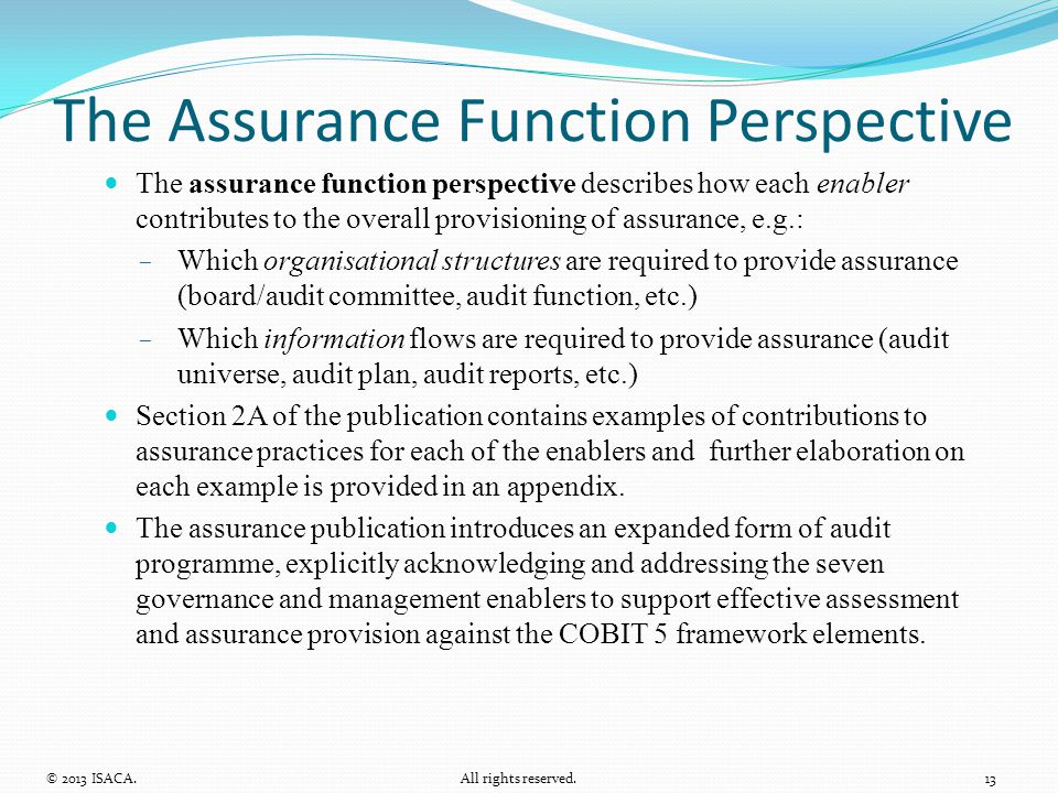 The Assurance Function Perspective