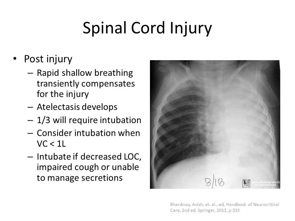 Spinal Cord Injury Post injury