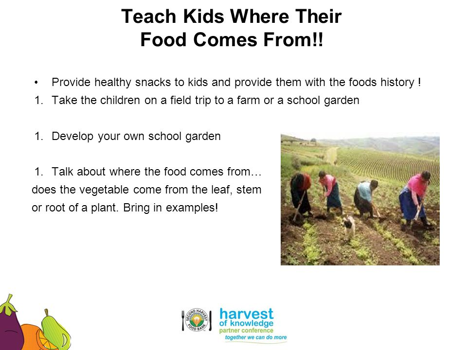 Teach Kids Where Their Food Comes From!!