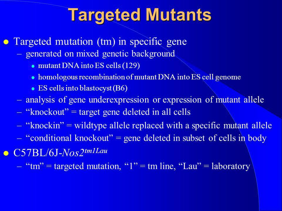 Targeted Mutants Targeted mutation (tm) in specific gene