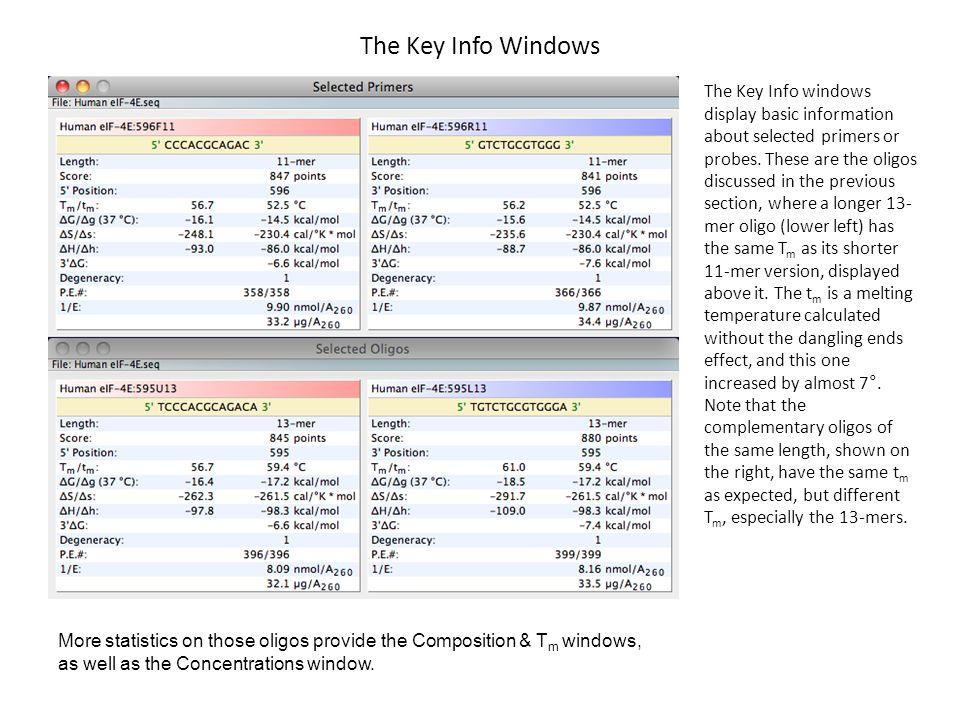 The Key Info Windows