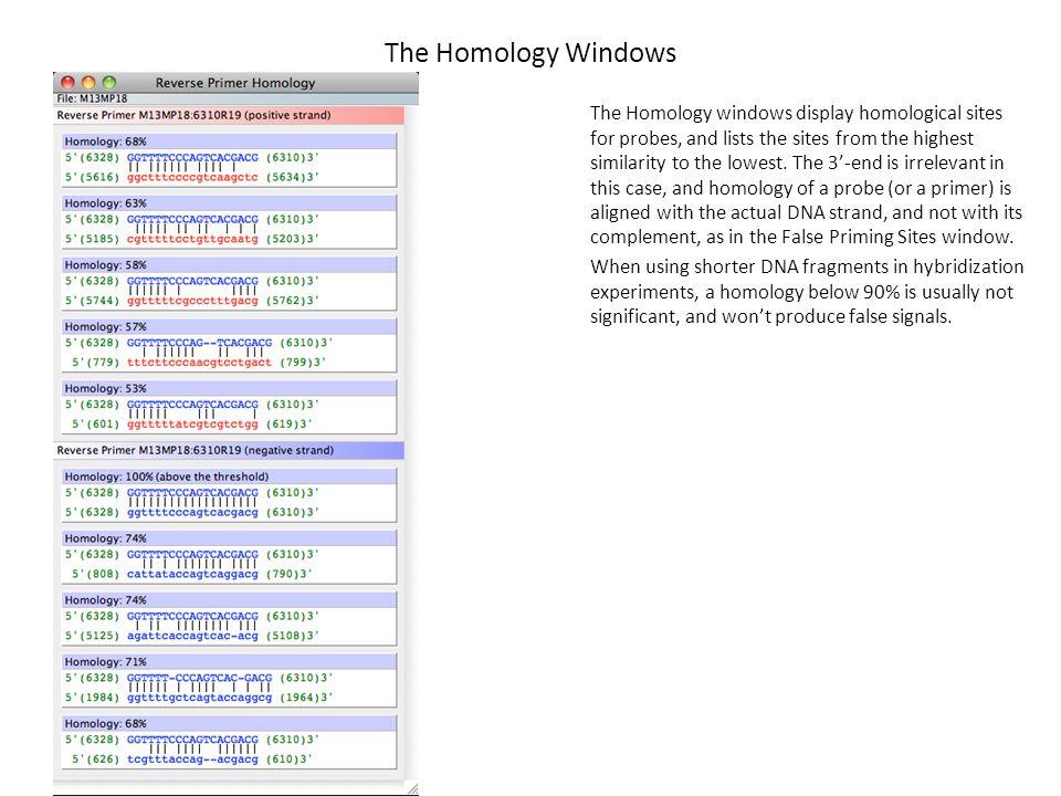 The Homology Windows