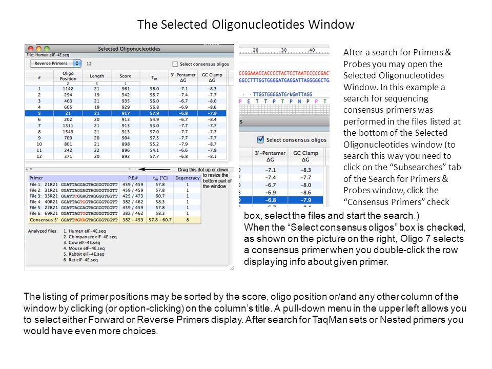 The Selected Oligonucleotides Window