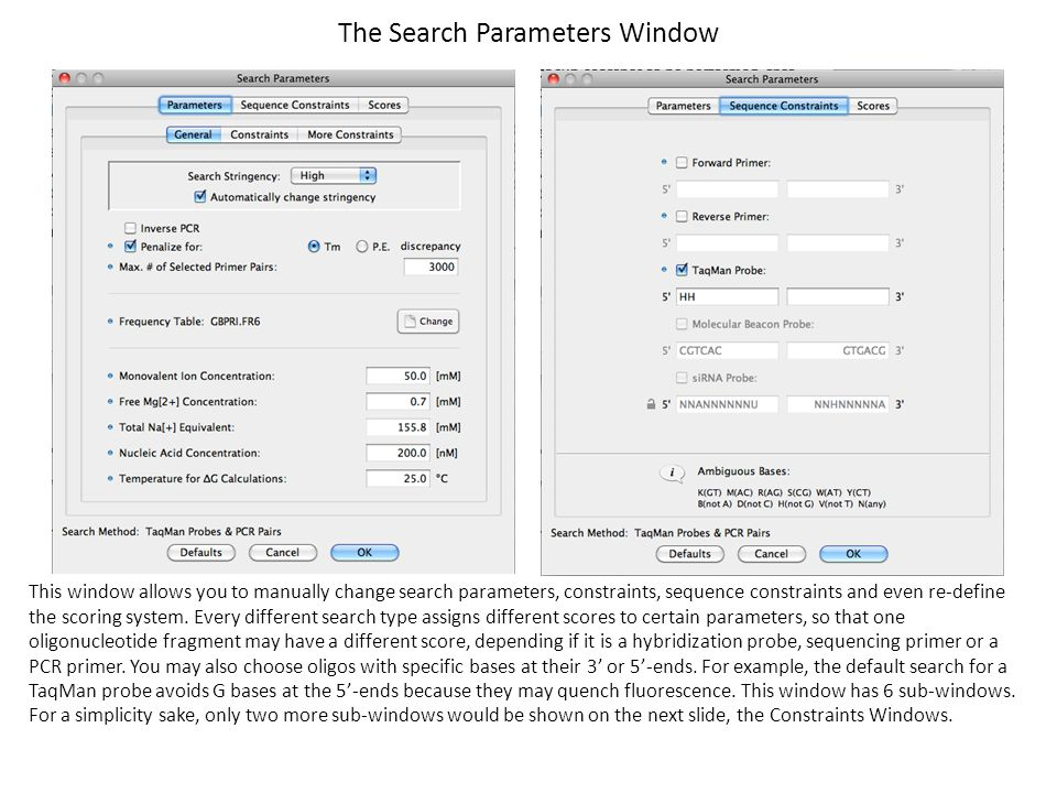 The Search Parameters Window