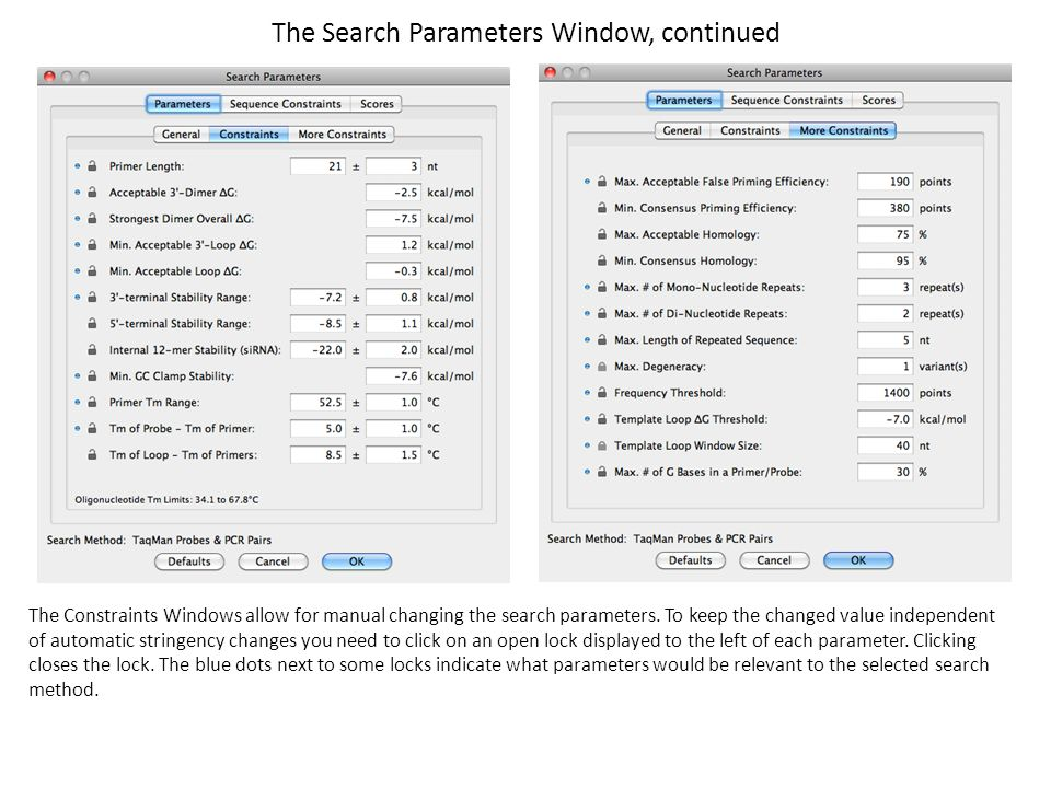 The Search Parameters Window, continued