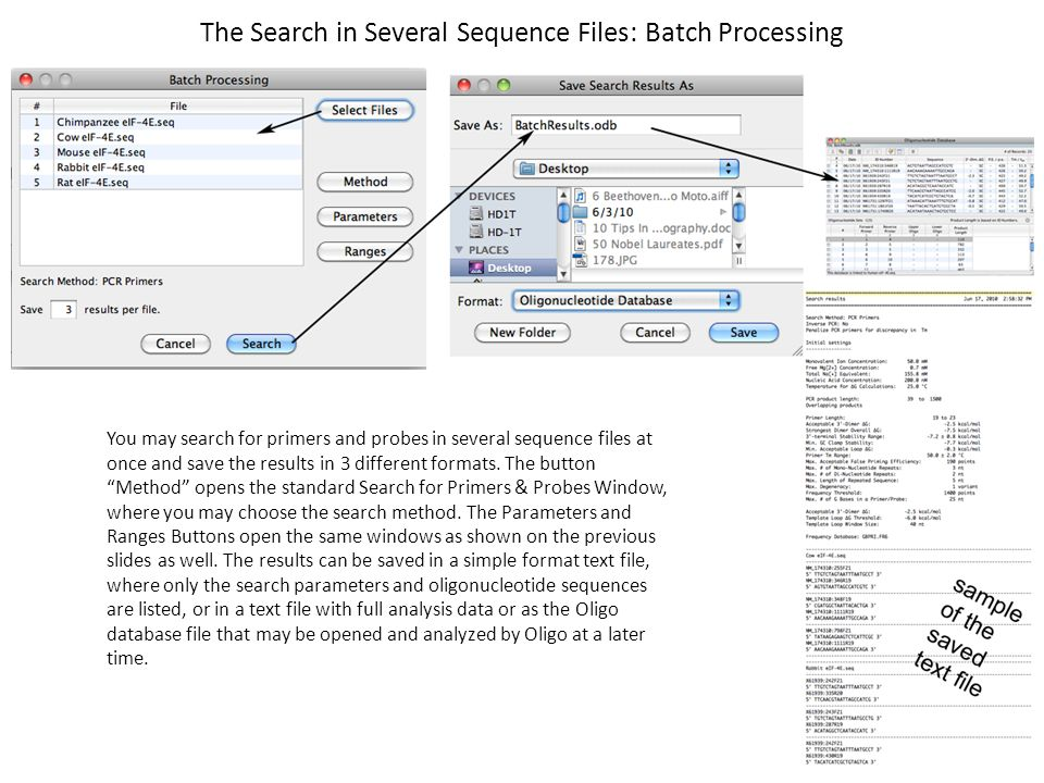 The Search in Several Sequence Files: Batch Processing