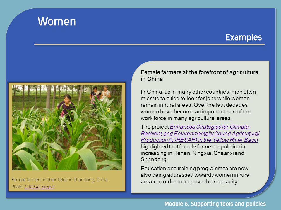 Women Examples Module 6. Supporting tools and policies