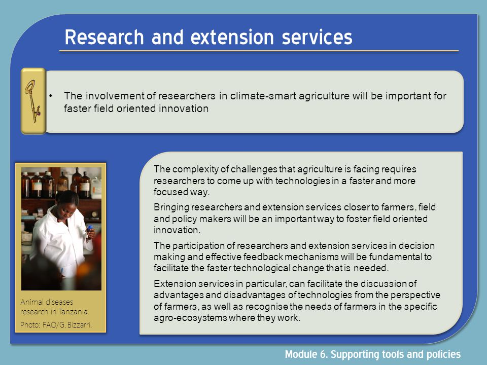 Research and extension services