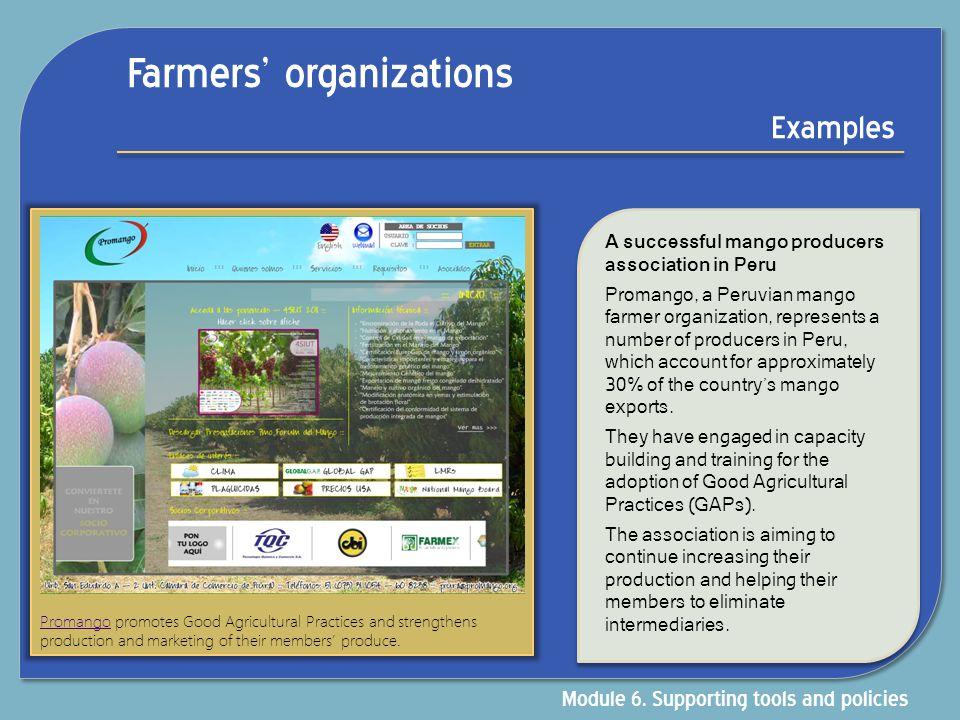 Farmers' organizations