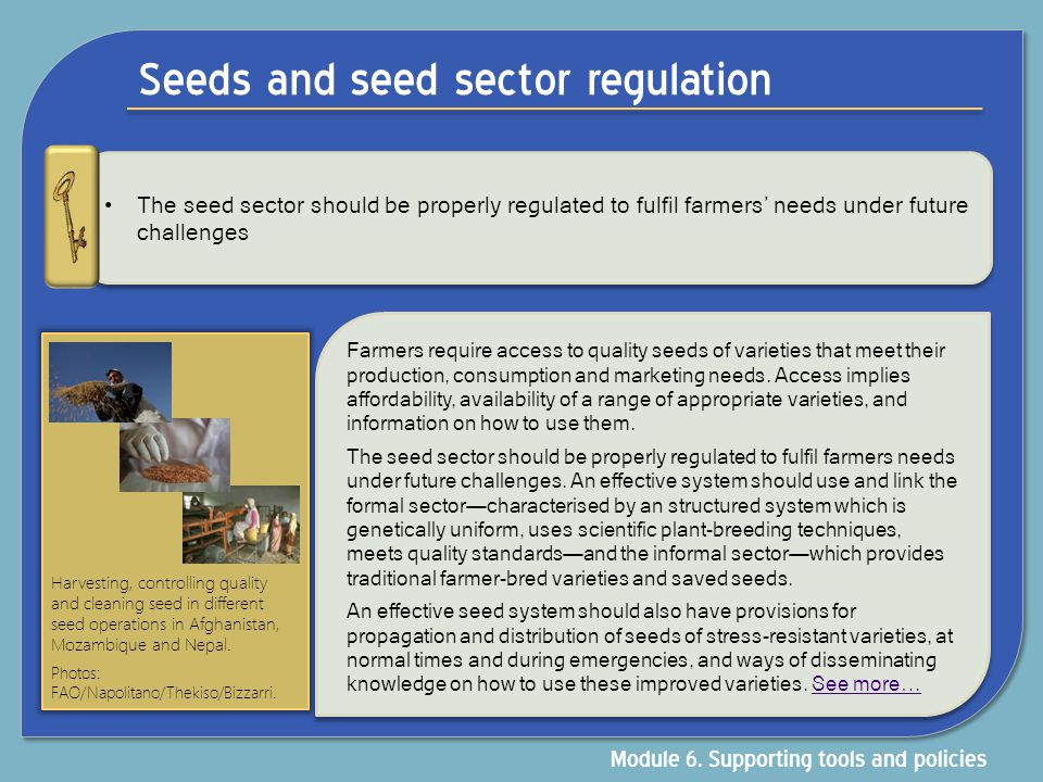 Seeds and seed sector regulation