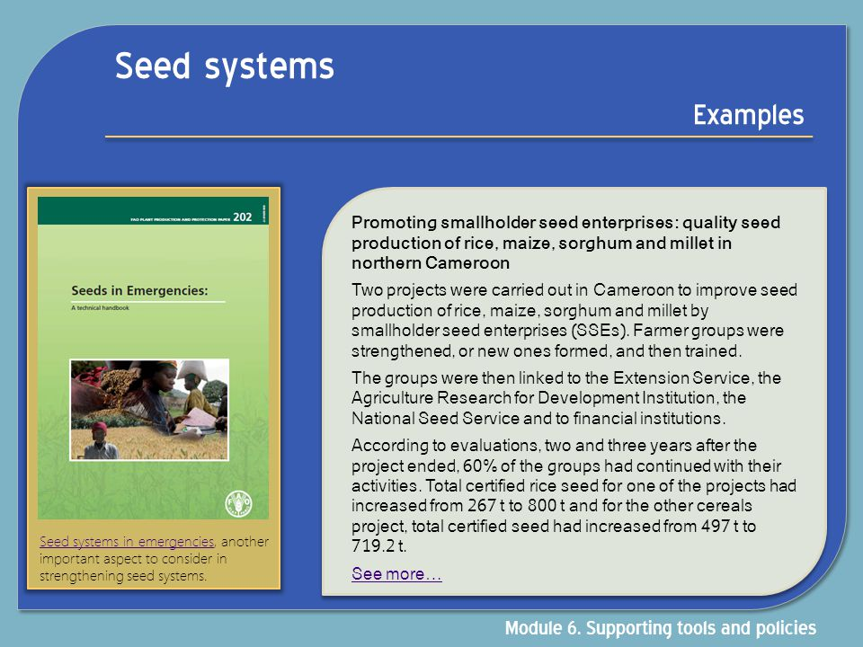 Seed systems Examples Module 6. Supporting tools and policies